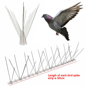 cheapest pigeon spike supplier online