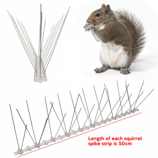 cheapest squirrel spike supplier online